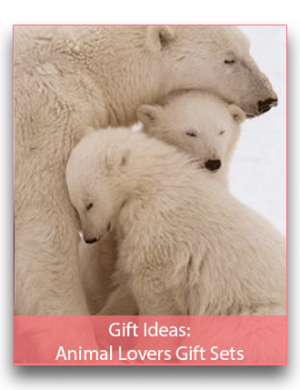 Gift Ideas: Animal Lovers Gift Sets